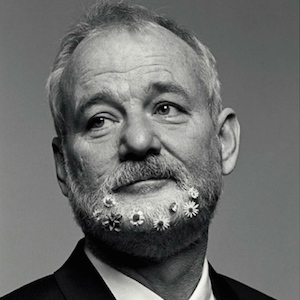 Bill Murray , phrases cultes , réplique , culte , citation, humour